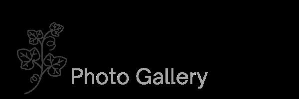 2865 Bay Tree Photo Gallery